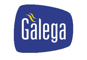 TV Galega Blumenau Logo